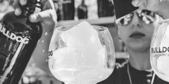 Cocktail Bartenders